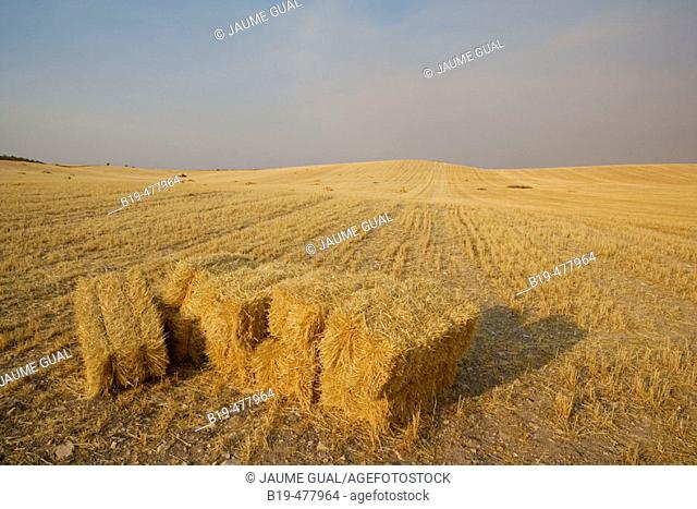 Mowed wheat field with straw bales at fore. Toledo province, Castilla-La Mancha, Spain