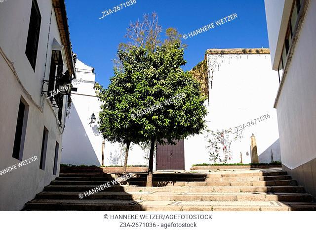 Traditional housing in Cordoba, Spain, Europe