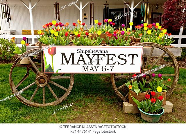 An old wagon with tulips and a Mayfest sign in Shipshewana, Indiana, USA