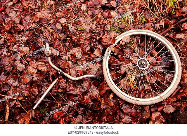 Decomposed bicycle wheel and handlebars with bell abandoned in the woods