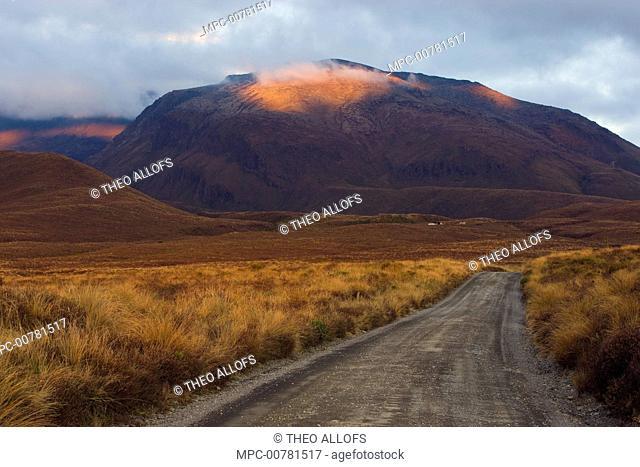 Dirt road in Tongariro National Park, New Zealand