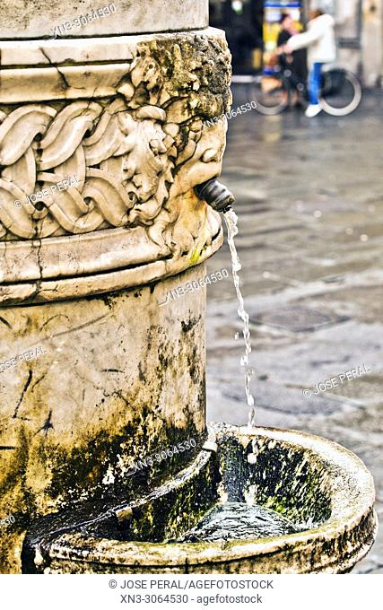 Drinking fountain, Lucca, Tuscany, Italy, Europe
