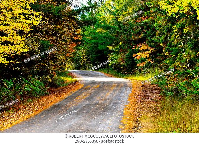 A curving rural road winds its way up a little hill and past the trees filled with autumn colored leaves