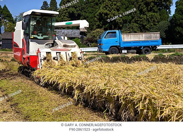 Harvesting rice with combine in Mt. Aso area, Kumamoto, Japan