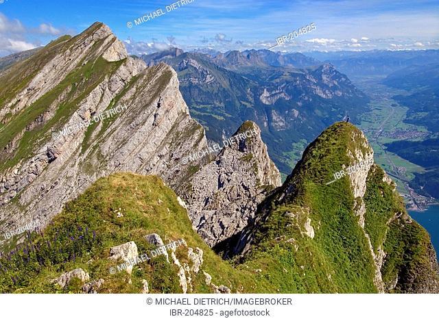 View from one peak of the Kurfuersten range to Walenstadt and the valley of the Seez, canton St. Gallen, Switzerland