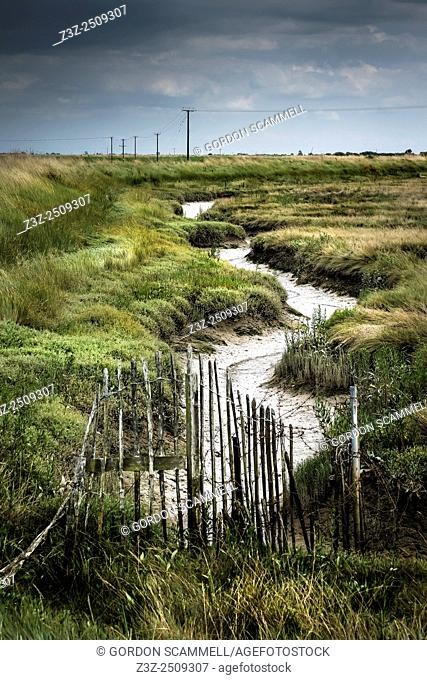 The saltings at Wallasea Island in Essex