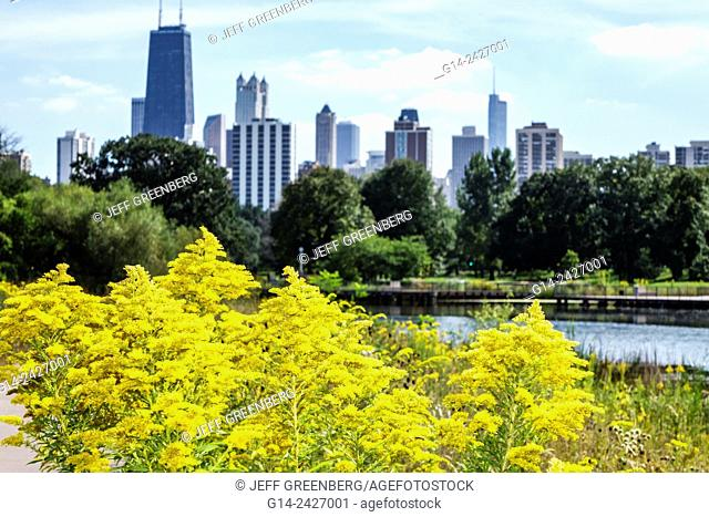 Illinois, Chicago, North Side, Lincoln Park, Lincoln Park Zoo, public park, Nature Boardwalk, ecosystem, native plants, prairie, tallgrass, wild flowers