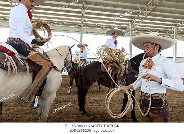 The charreada or charrería is a competitive event similar to rodeo and was developed from animal husbandry practices used on the haciendas of old Mexico