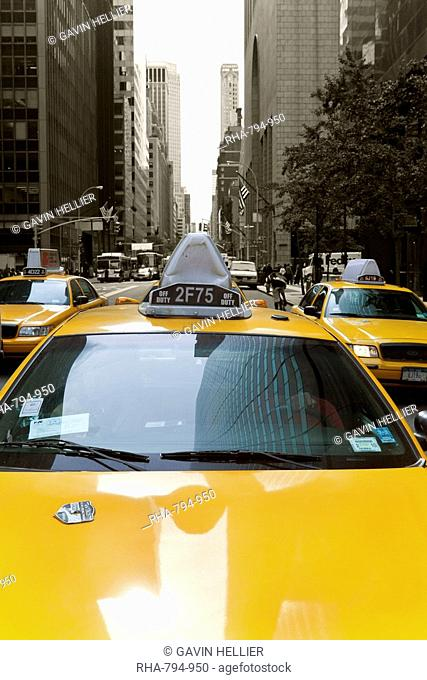 Yellow taxis along Fifth Avenue, Uptown Manhattan, New York City, New York, United States of America, North America