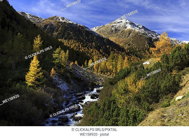 View on Val Susauna valley in autumn, Val Susauna, S-Chanf, Canton Grisons, Engadin, Switzerland
