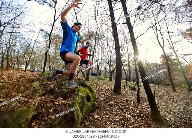 Trial, Running in the forest, Mount Ulia, Donostia, San Sebastian, Gipuzkoa, Basque Country, Spain, Europe