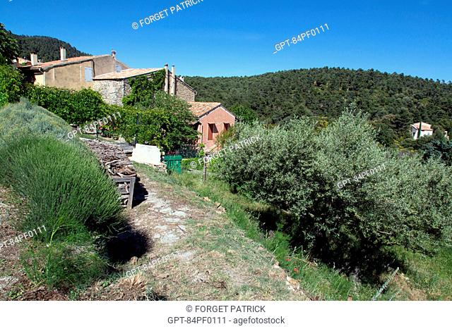HOUSE ON THE EDGE OF VITROLLES EN LUBERON, REGIONAL NATURE PARK OF THE LUBERON, VAUCLUSE (84), FRANCE