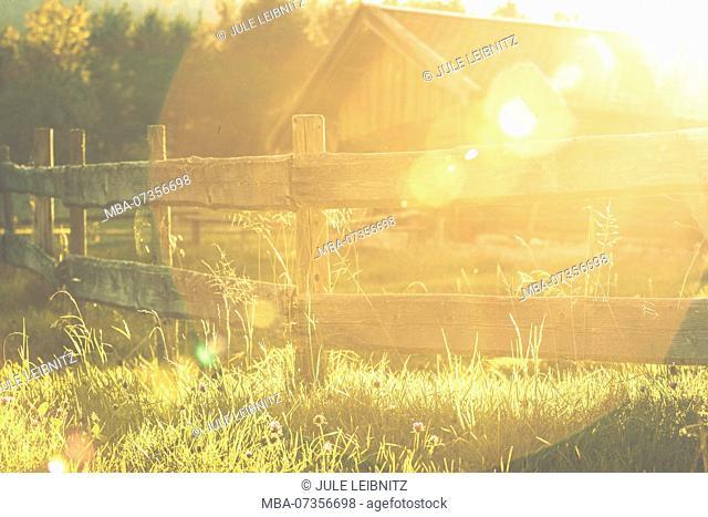 Meadow, barn, sun