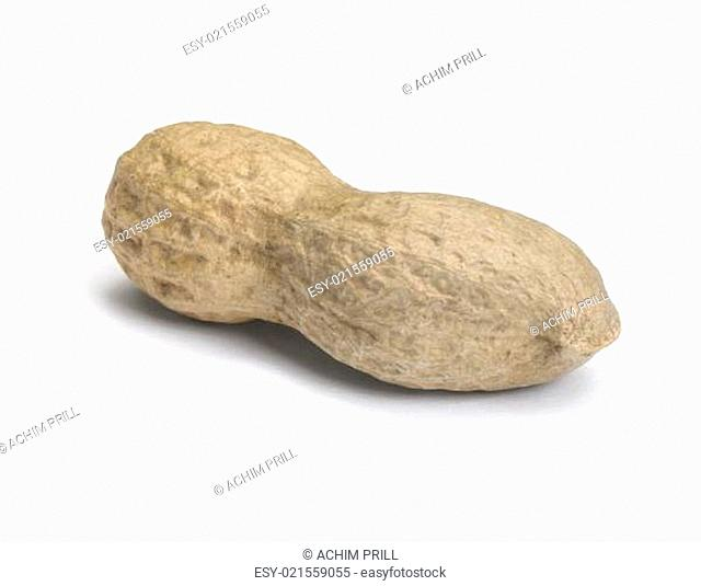 perfect peanut