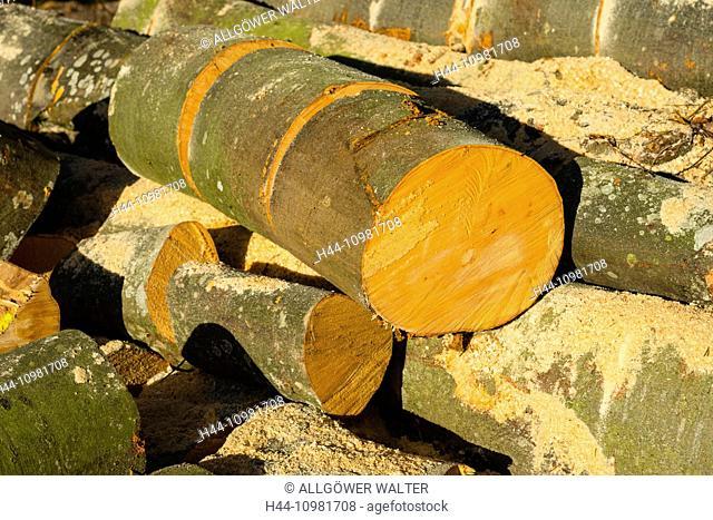 sawed fire wood