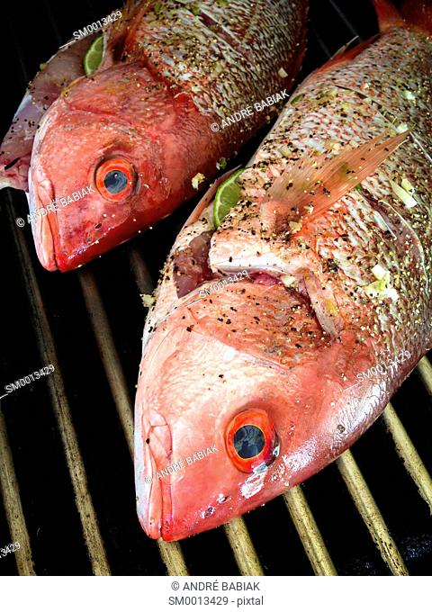 Close up of two red snapper fish, stuffed with a slice of lime and seasoned with pepper and garlic on grill grate