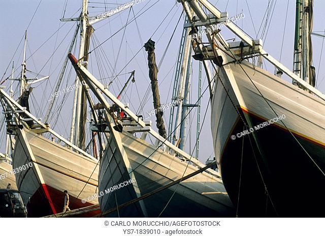 The old port for sailing vessels in Jakarta, Sunda Kelapa harbour, Java, Indonesia