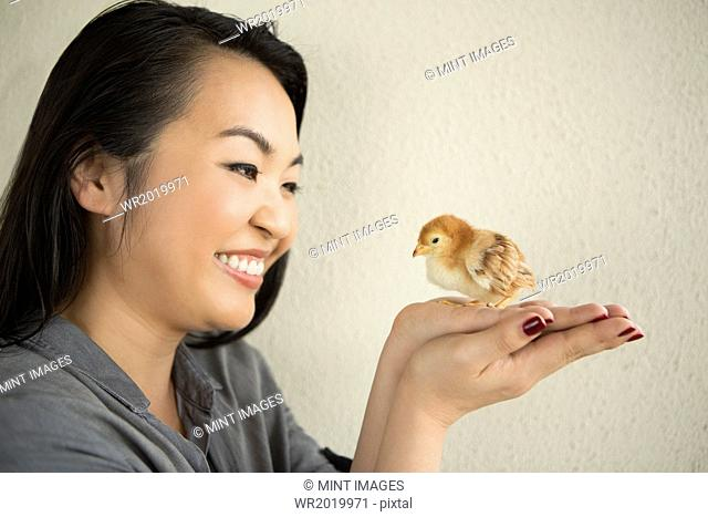 Smiling woman holding a tiny chick in her hands