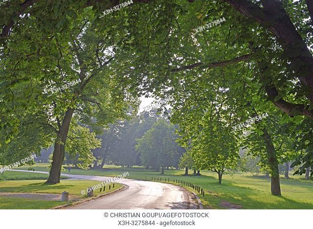 Park of the Chateau of Rambouillet, Forest of Rambouillet, Haute Vallee de Chevreuse Regional Natural Park, Yvelines department, Ile-de-France region, France