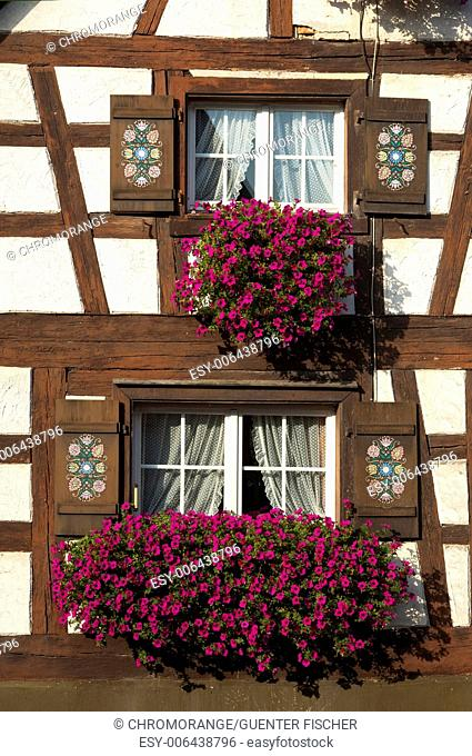 Flower box brimming with petunia in a window of half-timbered house, Baden-Wuerttemberg