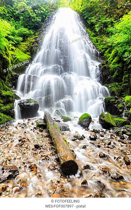 USA, Oregon, Multnomah County, Columbia River Gorge, Fairy Falls