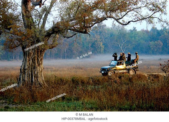 MORNING JEEP RIDE FOR WILDLIFE WATCHING, KANHA, MADHYA PRADESH