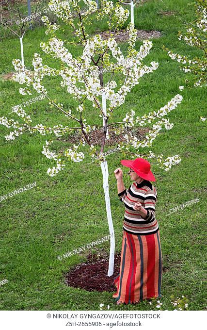 Russia. Belgorod region. Woman in the lush spring garden