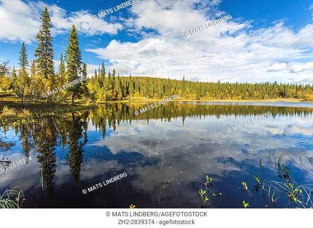 Lake in autumn season with trees in autumn colors reflecting in the water, mountain in background, Gällivare, Swedish Lapland, Sweden