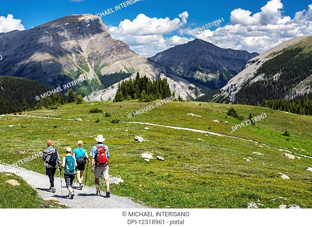 A group of hikers walking along a meadow trail with mountain ranges in the distance and blue sky and clouds; Banff, Alberta, Canada