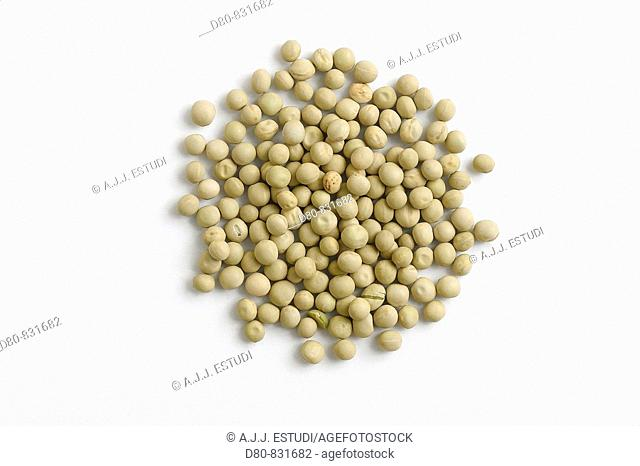 legume type on white background