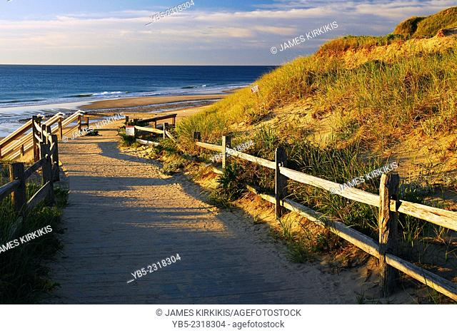 Early Morning, Cape Cod