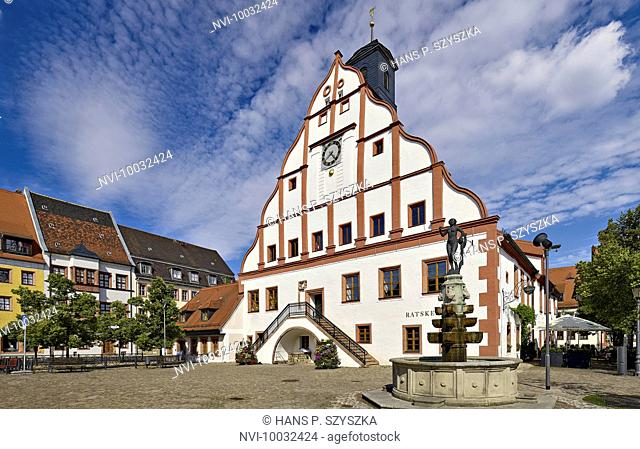 Town Hall on the market square in Grimma, district Leipzig, Saxony, Germany