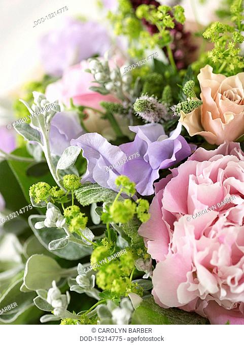 Bunch of flowers including roses, peonies, pea flowers, alchemilla, spearmint, close-up