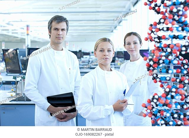 Scientists with molecular model in lab