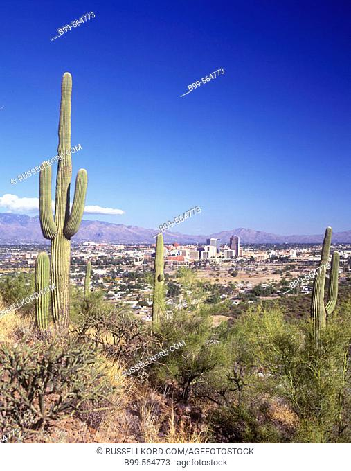 Downtown Skyline, From Sentinel Peak Park, Tucson, Arizona, Usa