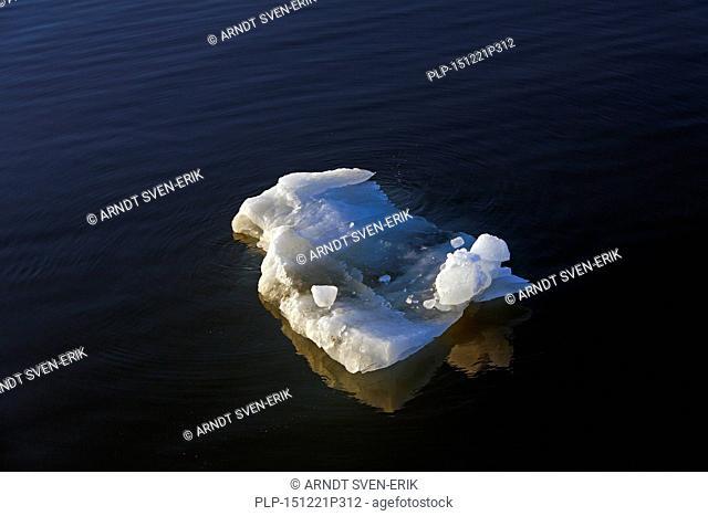 Melting ice floe drifting in Polar ocean