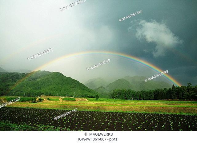 Japan, Shiga Prefecture, Rainbow over field