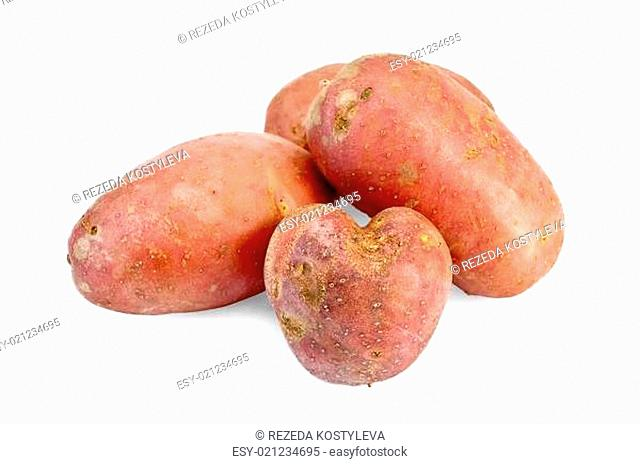 Four red potatoes isolated on a white background