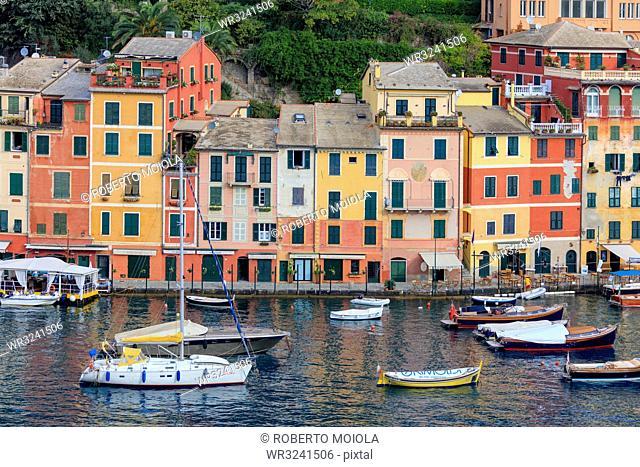 Harbour and typical coloured houses, Portofino, province of Genoa, Liguria, Italy, Europe