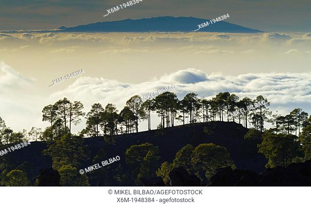 Clouds sea. Teide National Park. Tenerife island, Canary Islands, Atlantic Ocean, Spain