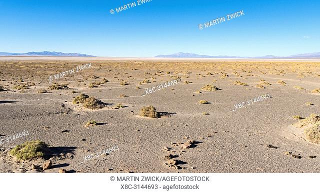 Landscape at the salt flats Salar Salinas Grandes in the Altiplano. South America, Argentina