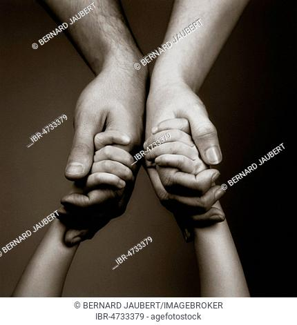 Child's and parents hands holding each other, studio shot, symbol picture, France