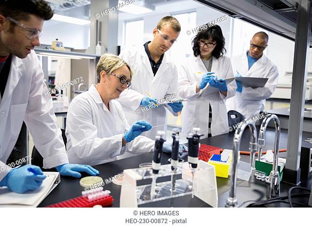 Science professor guiding students in scientific experiment laboratory
