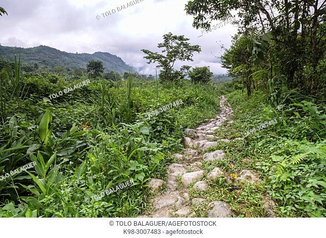 camino de Tesoro Chiquito, La Taña, Franja Transversal del Norte , departamento de Quiché, Guatemala
