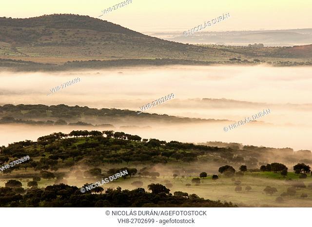 Landscape with fog. Alburquerque. Province of Badajoz. Extremadura. Spain