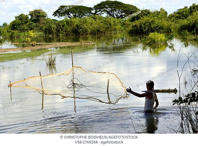 Myanmar, Kayin (Karen) State, Hpa-An region, Fishing in the flooded paddy fields