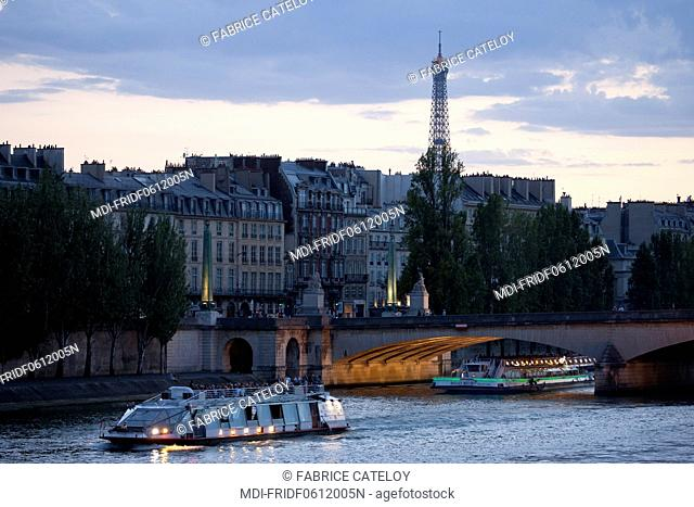 France - Ile de France - Paris - Cruise ship on the Seine