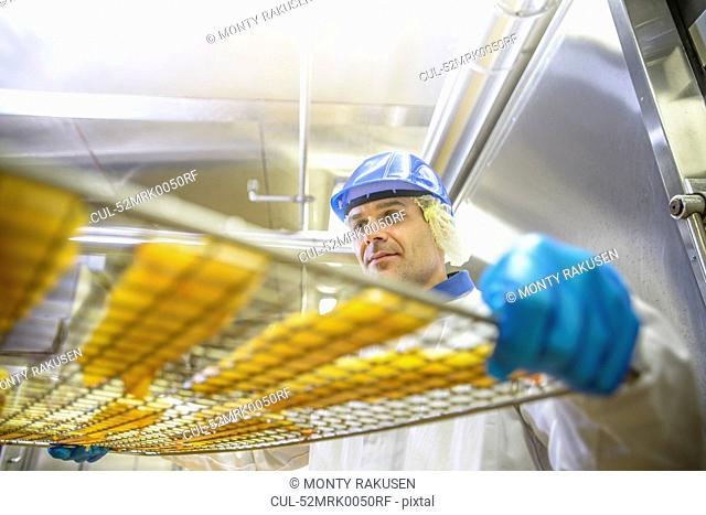 Worker holding tray of fish in factory