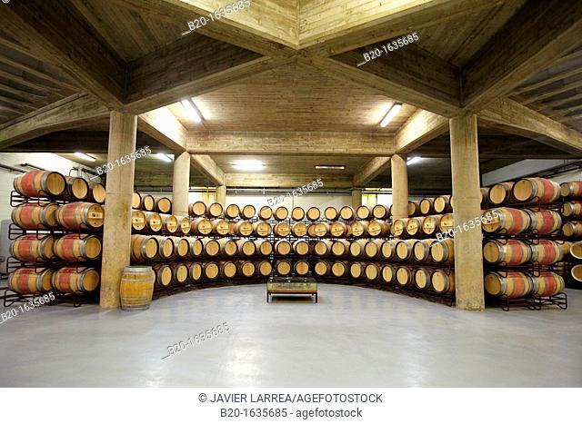 Barrel cellar, Bodegas Olarra, Logroño, La Rioja, Spain