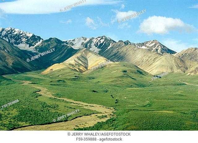 Alaska range from polychrome overlook. Denali National Park. Alaska. USA